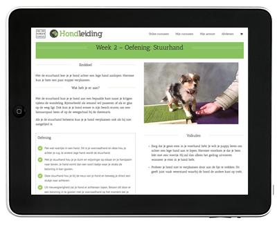 online puppycursus oefening