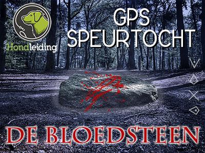 GPS speurtocht De bloedsteen