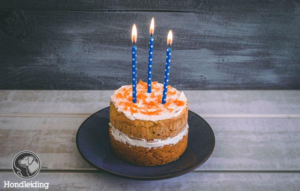 Verjaardags carrot cake